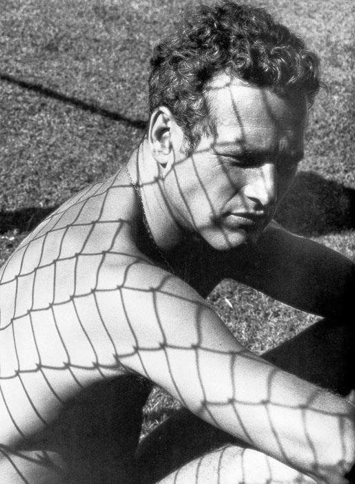 Paul Newmann, 1964.jpg