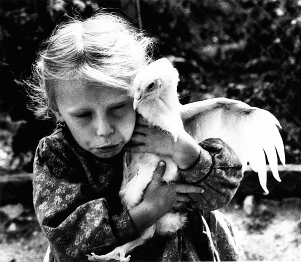 kislany_csirkevel_1974.jpg