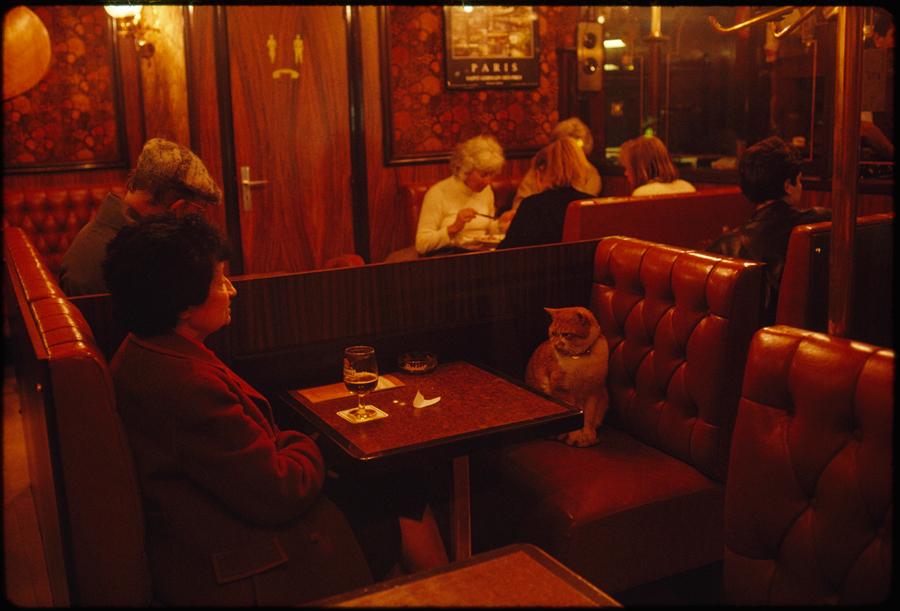 jameslstanfield1988.jpg