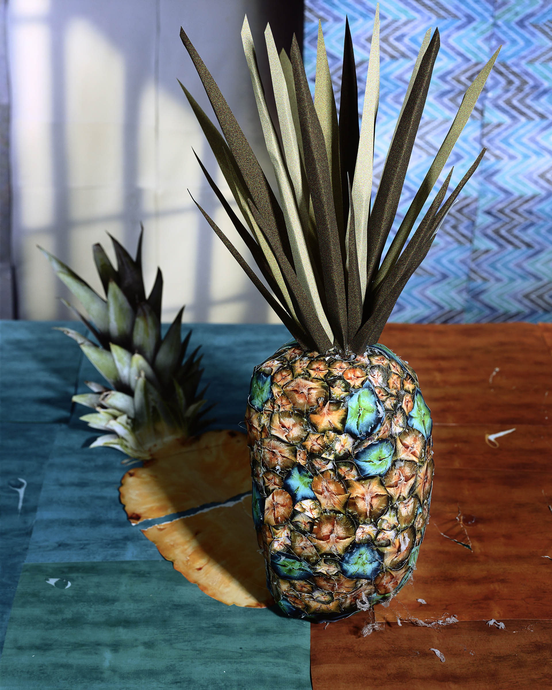 Fotó: Daniel Gordon: Pineapple and Shadow, 2011 © Daniel Gordon Courtesy the artist and James Fuentes Gallery, New York