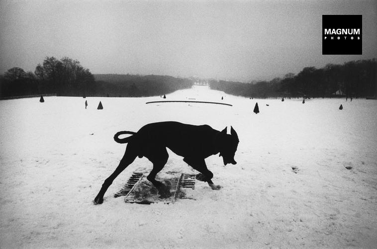 Fotó: Josef Koudelka: Hauts-de-Seine. Parc de Sceaux. 1987 © Josef Koudelka/Magnum Photos<br /><br />