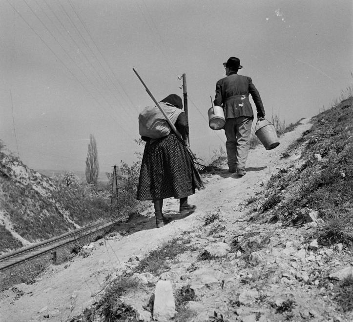 Fotó: Kotnyek Antal: Öskü, domboldal a Kerek templommal szemben, 1957 © Fortepan