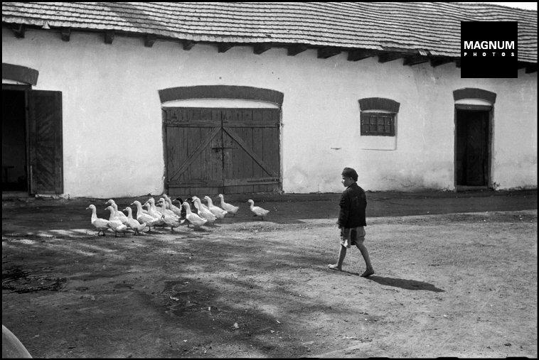 Fotó: David Seymour: Magyarország, 1947 © David Seymour/Magnum Photos