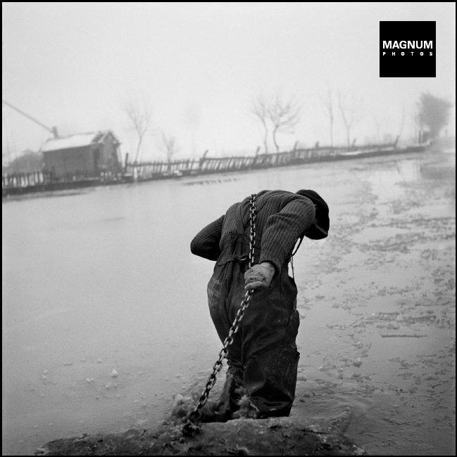 Fotó: Werner Bischof: A megáradt Tisza, 1947 © Werner Bischof/Magnum Photos