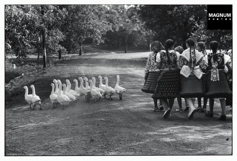 Fotó: Elliott Erwitt: Magyarország, 1964 © Elliott Erwitt/Magnum Photos