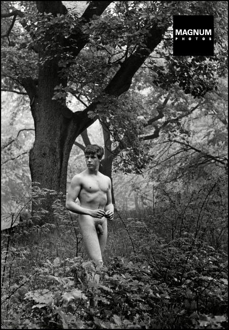 Fotó: Herbert List: Alexander a fák között. München mellett, Németország, 1956 © Herbert List/Magnum Photos