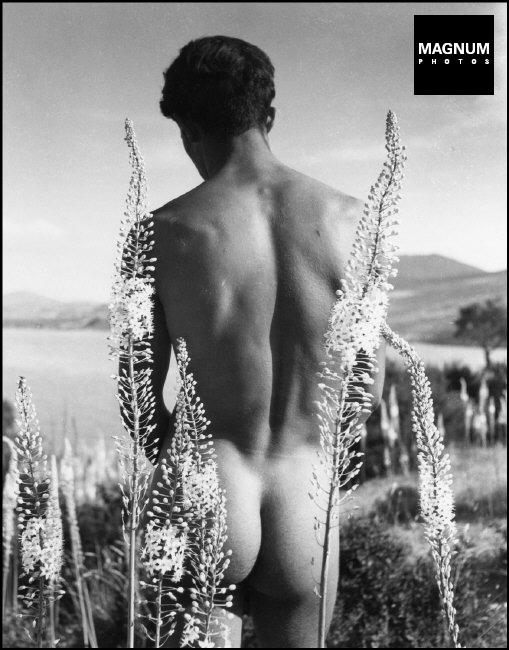 Fotó: Herbert List: Arab fiú korbácsliliomok között, Hammamet, Tunézia, 1935 © Herbert List/Magnum Photos