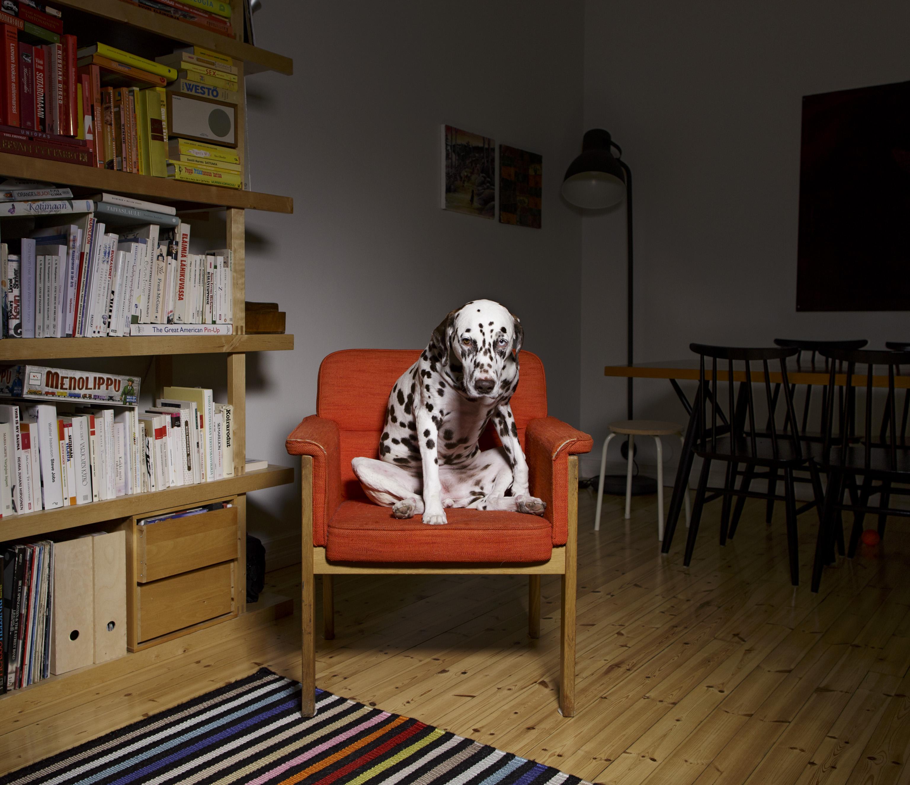 Fotó: Maija Astikainen: Alma © Maija Astikainen