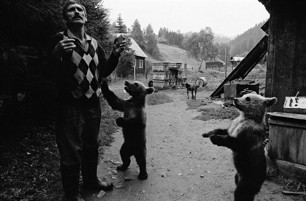 Fotó: Molnár Zoltán: Gyergyói havasok / Gurghiului Mountains, Erdély 2001.