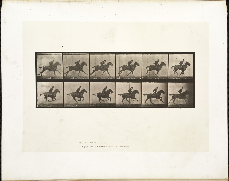 Animal_locomotion._Plate_624_(Boston_Public_Library).jpg