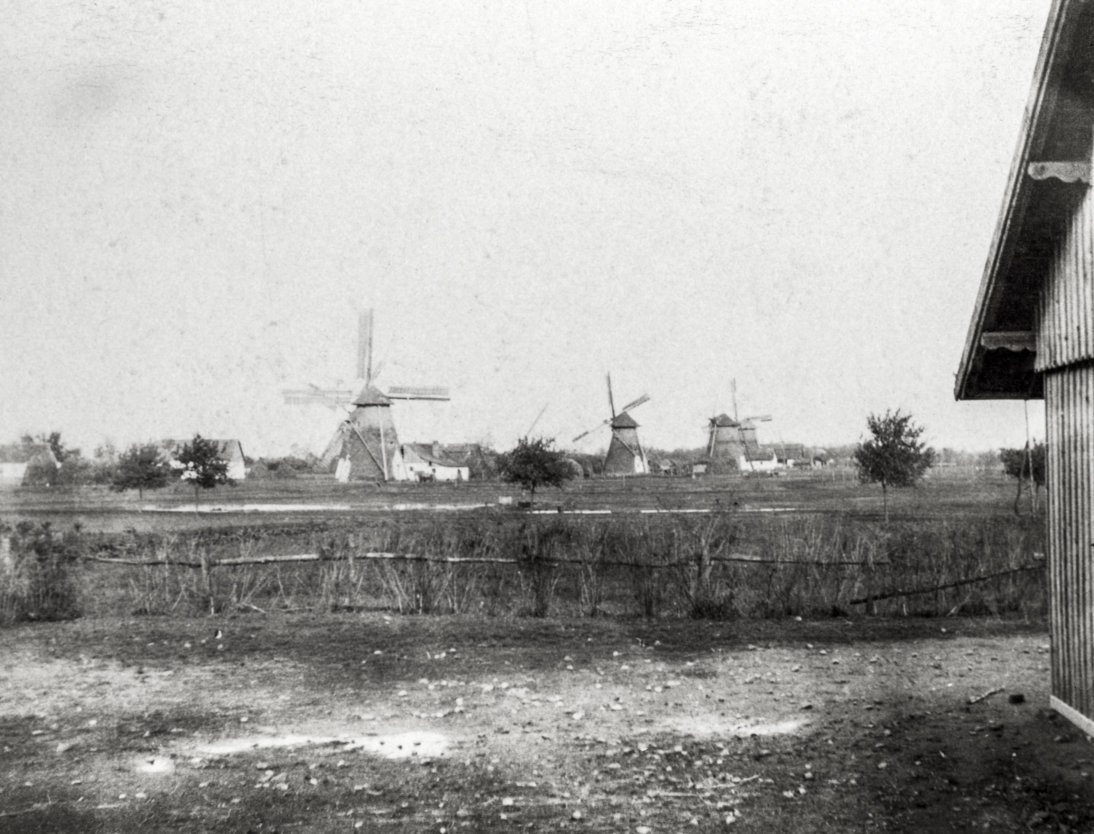 Szélmalmok. A jó széljárású sík vidék adottságait használja ki az adai felvételen látható malmok sora. <br />Ada, 1907 előtt, F 8475<br /><br />Fotó: Alföldy Flóra © Néprajzi Múzeum