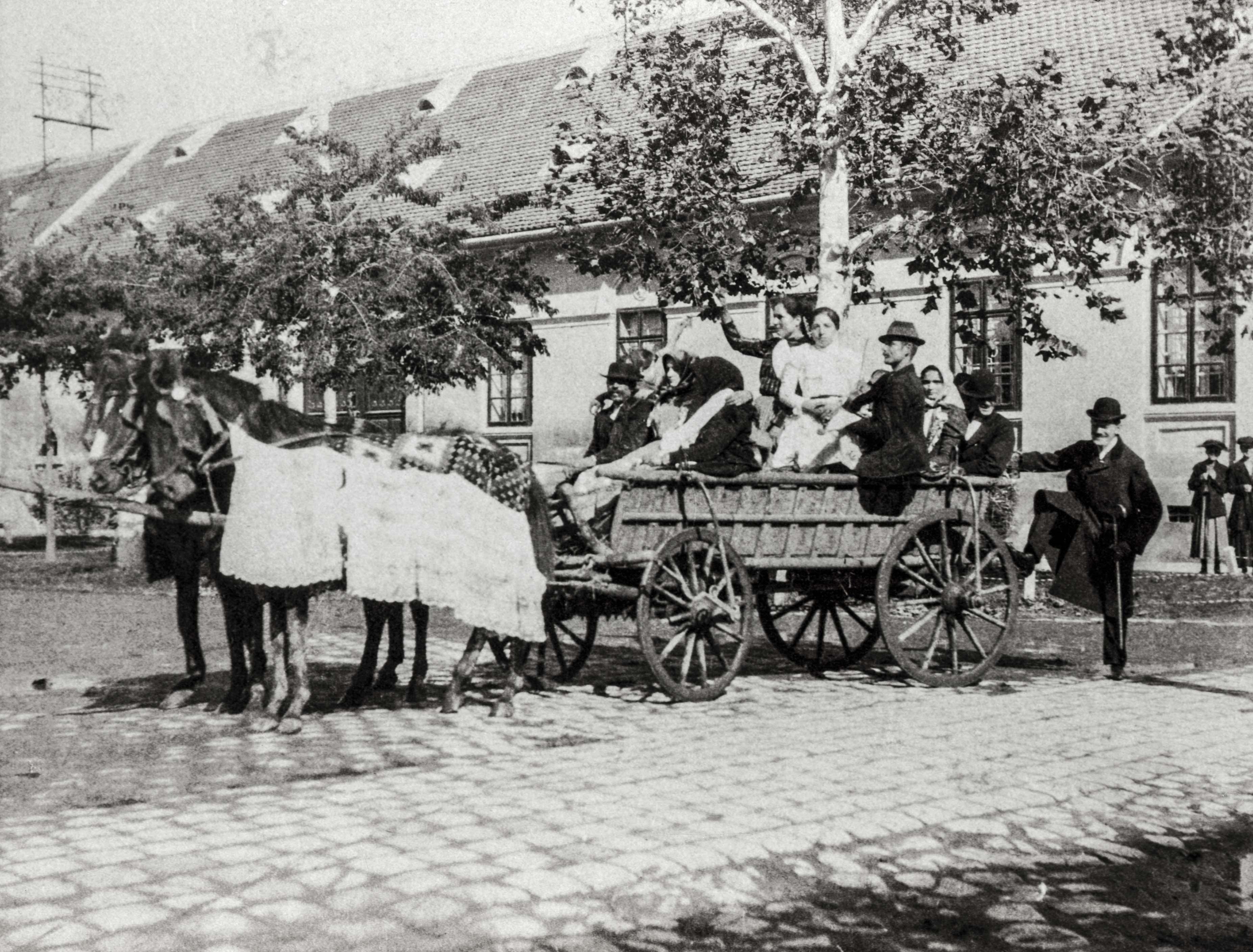 Szerb lakodalom. Felvételei jól tükrözik Bácska számos bevándorlási és betelepítési hullám eredményeként soknemzetiségű, és az ezzel együtt különböző vallási hovatartozású társadalmát. A felvételeken apró sajátosságok árulkodnak a szereplők nemzetiségéről. Ezen a képen a lovak délszláv szokás szerinti szőttesekkel való díszítése utal arra, hogy egy szerb család ünnepi pillanatait örökítette meg a fotós.<br />Zombor, 1907 előtt, F 8496<br /><br />Fotó: Alföldy Flóra © Néprajzi Múzeum<br />