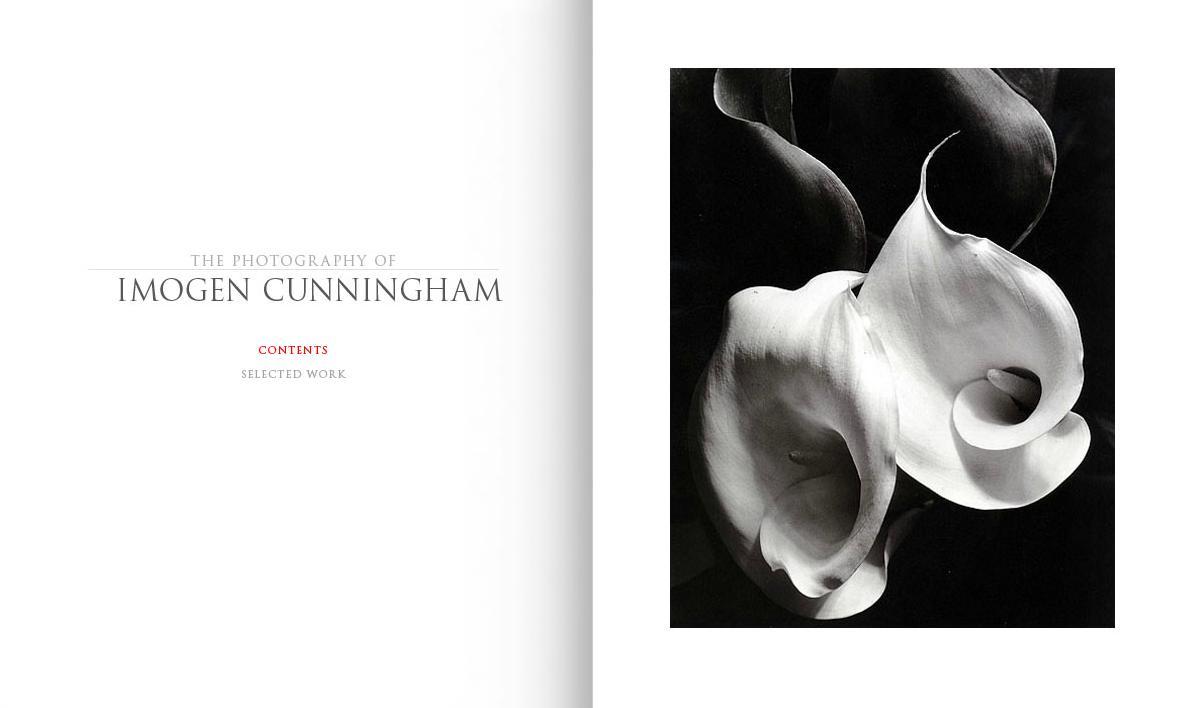cunningham_portfrolio.jpg
