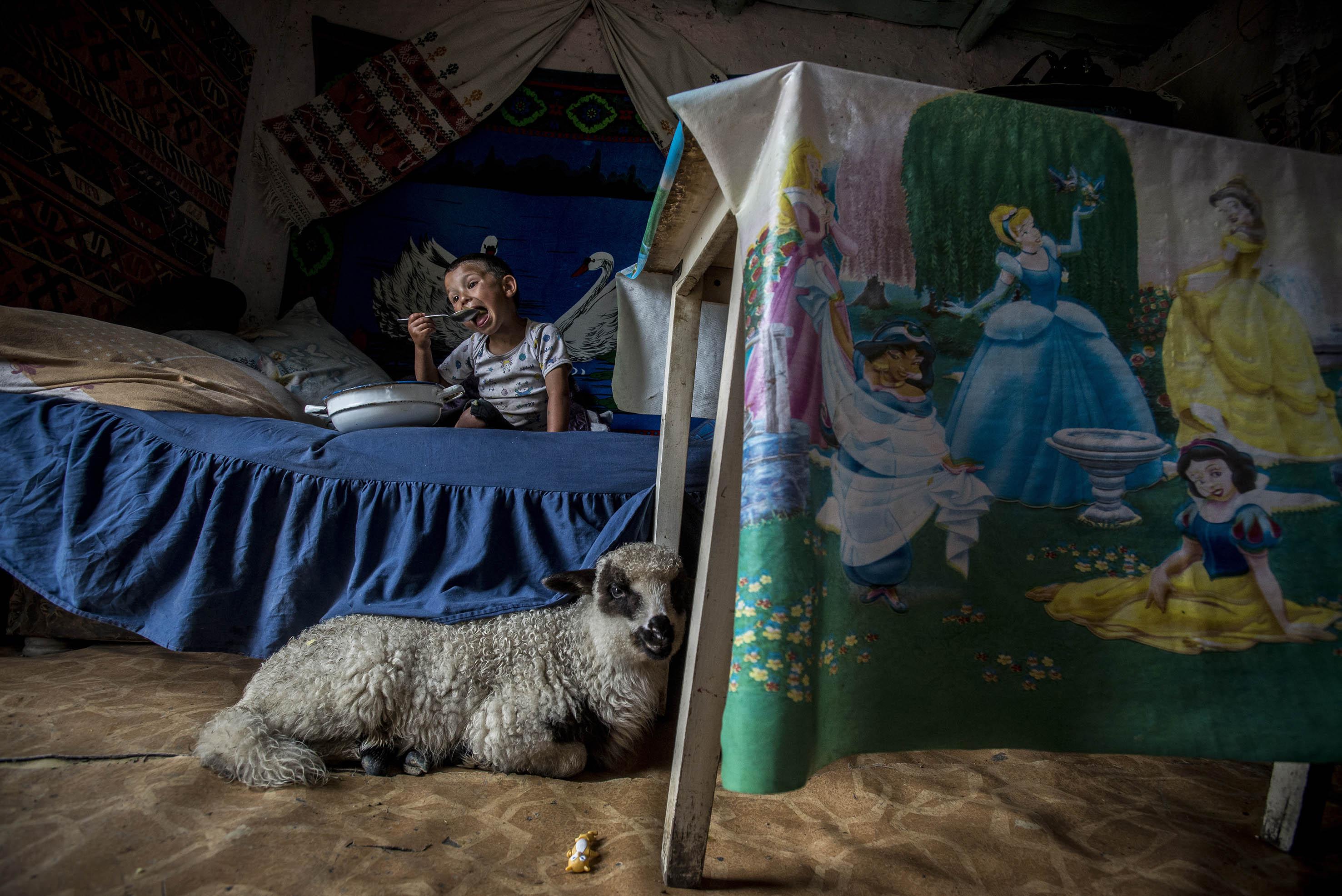 Kati öt gyermekével már közel egy évtizede él a Craicán egy nyolc négyzetméteres viskóban. A képen Rohit nevű gyermeke ebédel, 2013. május<br /><br />Fotó: Hajdú D. András / Magyar Sajtófotó Pályázat