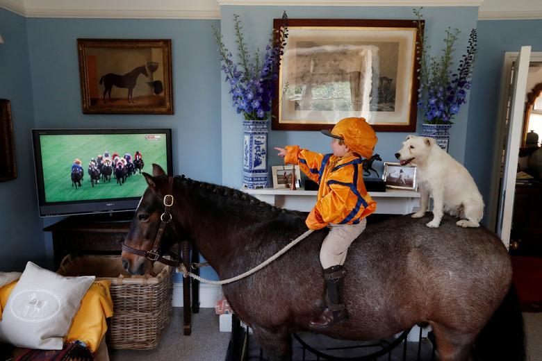 Fotó: A hároméves Merlin Coles otthonában nézi a tévében a Royal Ascot lóversenyt, miközben lován, Mr. Glitter Sparkles-en ül Mistress kutyájával együtt, Bere Regis, Dorset, Nagy-Britannia, 2020. június 17. © REUTERS / Paul Childs