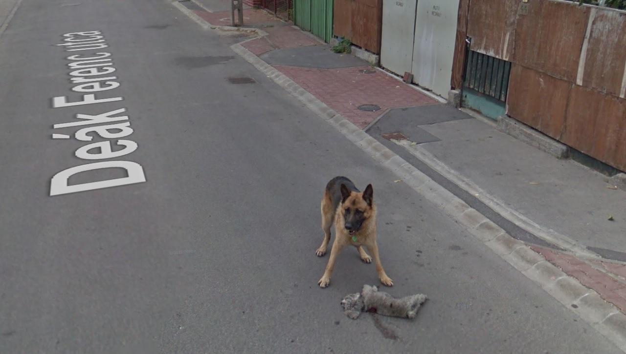 Fotó: Google Street View <br />Magyarország, Budaörs, Deák Ferenc utca