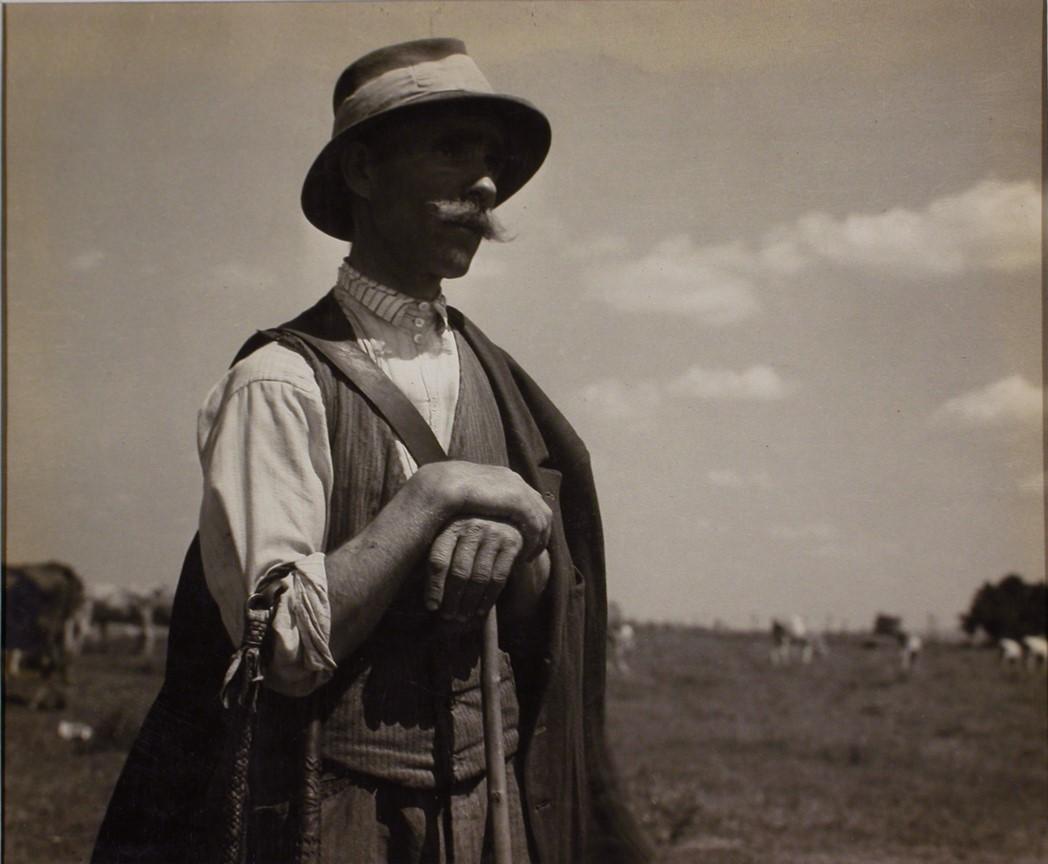 Fotó: Haár Ferenc: Gulyás a Hortobágyon, 1935 © Magyar Fotográfiai Múzeum