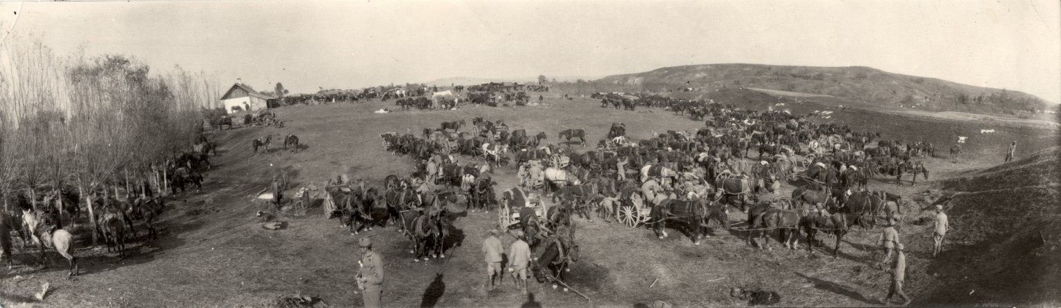 Fotó: Balogh Rudolf: A tábor (Tájkép csata után), 1916 © Magyar Fotográfiai Múzeum