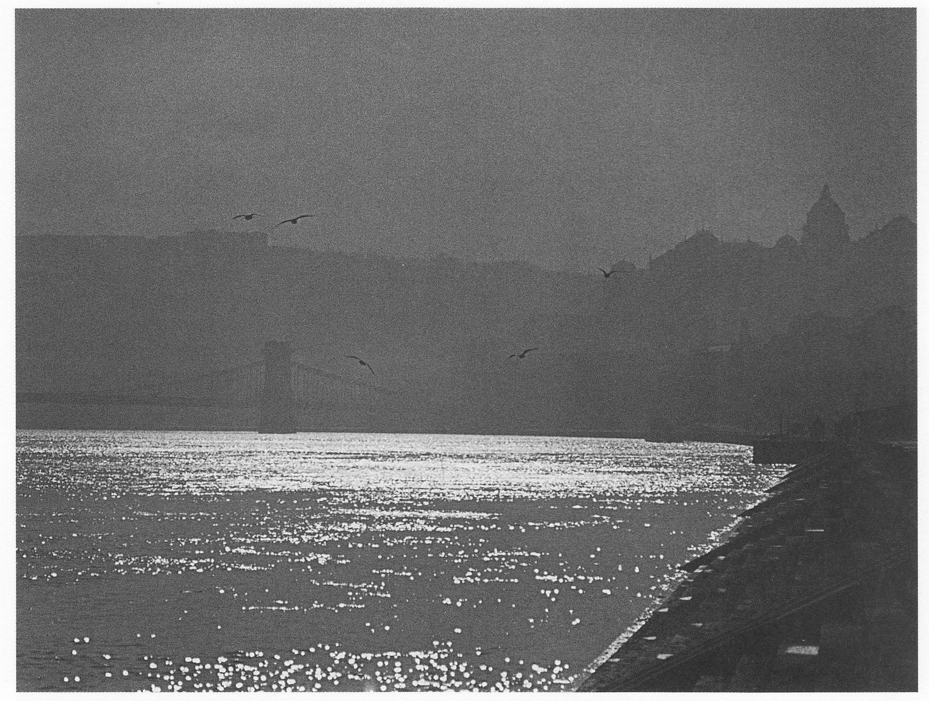 Fotó: Dulovits Jenő: Csillogó víztükör a vizivárosi Duna-parton, 1940-es évek eleje © Magyar Fotográfiai Múzeum