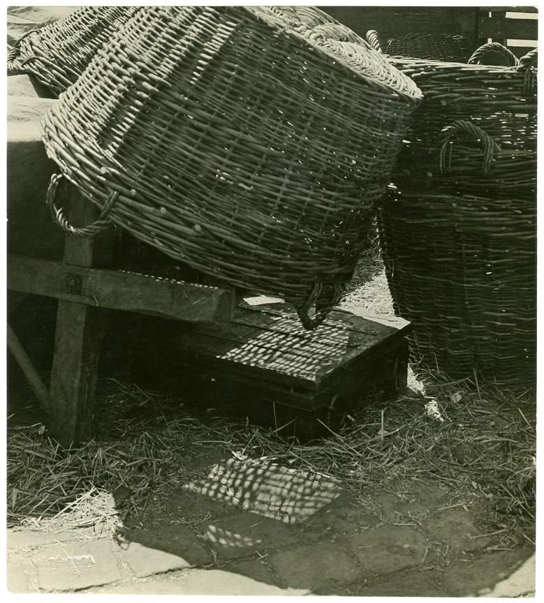 Fotó: Máté Olga: Kosárcsendélet. 1920-as, brómezüst zselatin © Magyar Fotográfiai Múzeum