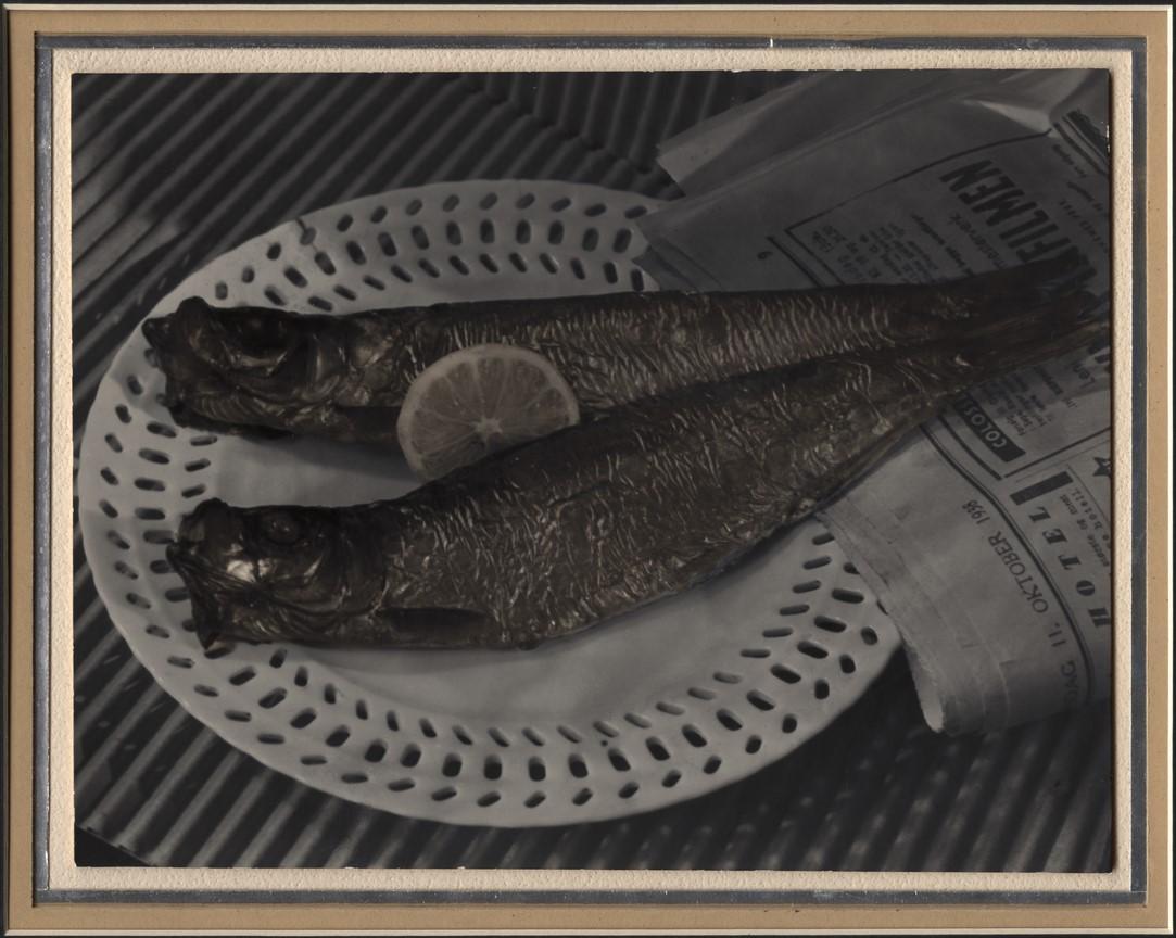 Fotó: Pécsi József: Hering, 1938 © Magyar Fotográfiai Múzeum