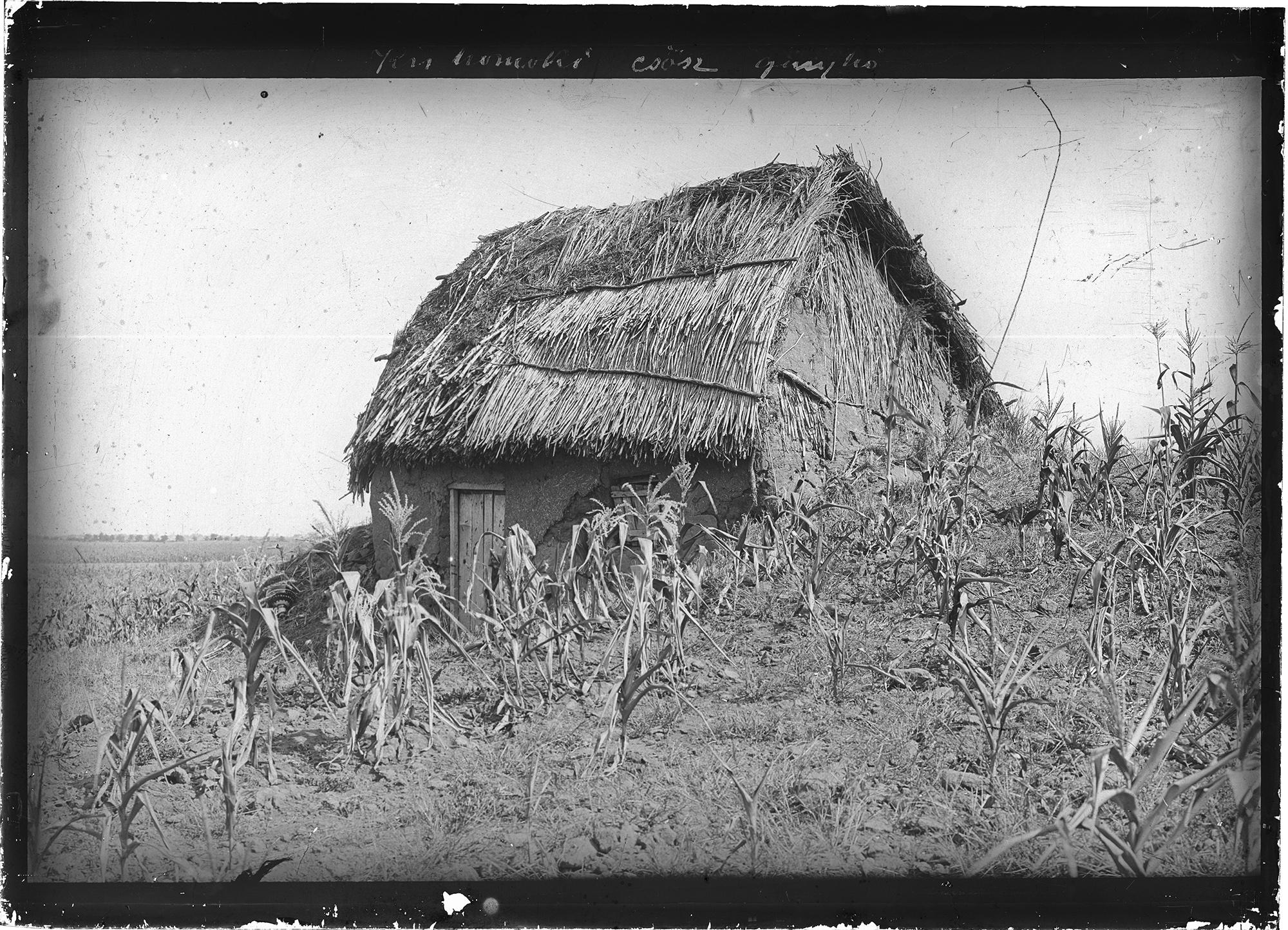 Fotó: Plohn József: A kishomoki csősz kunyhója. © Tornyai János Múzeum gyűjteménye, Hódmezővásárhely
