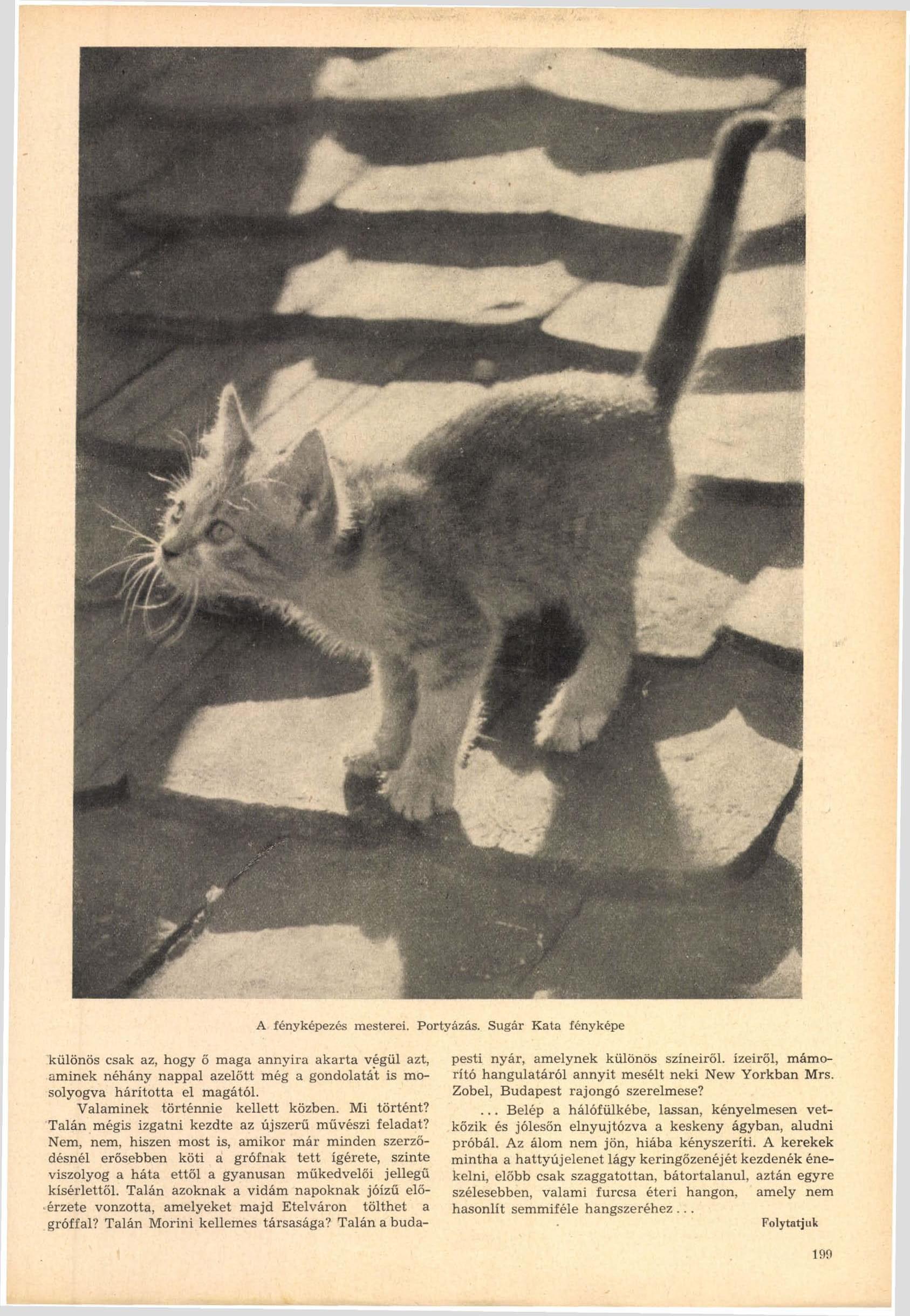 Fotó: Sugár Kata: Portyázás<br />Megjelent: Új Idők, 1942. 1.<br />Forrás: adtplus.arcanum.hu