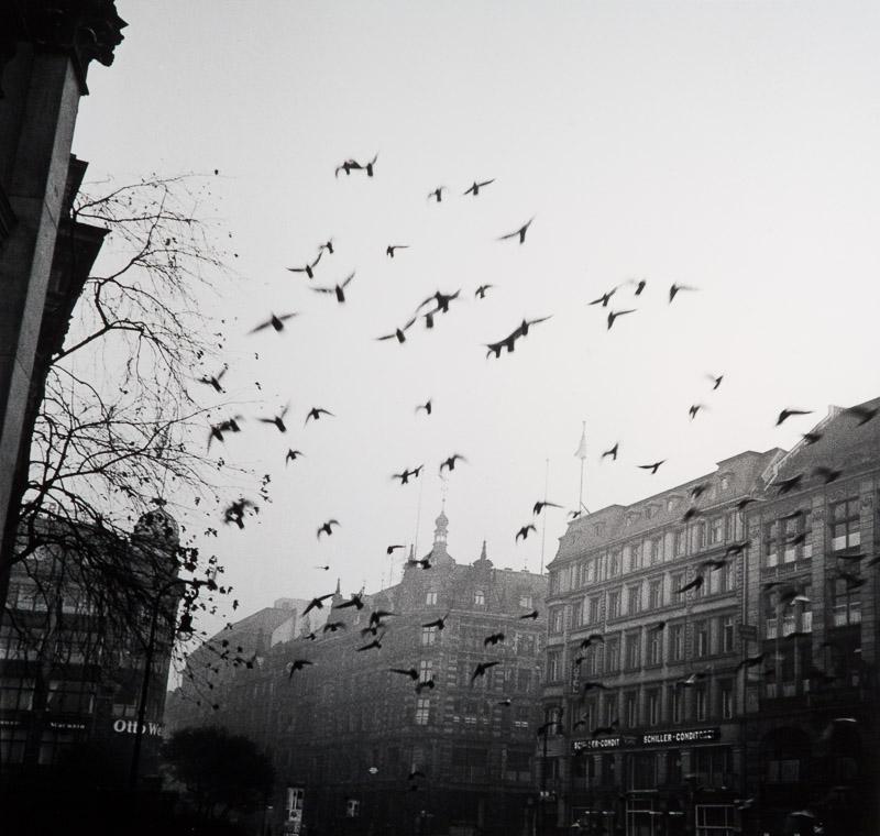 01_viszlat_berlin_1933.jpg