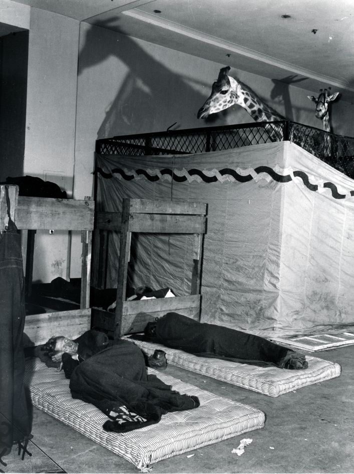 Fotó: Weegee: Alvóhely a cirkusz táborában, évszám nélkül © Courtesy Institute for Cultural Exchange, Germany 2018