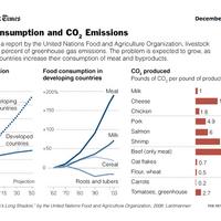 Morzsák az asztalunkról - a szén-dioxid kibocsátás és a húsfogyasztás kapcsolata