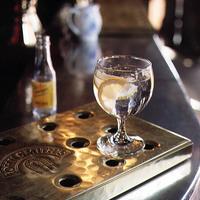 Klasszikus koktélok 2. rész - Gin Tonic