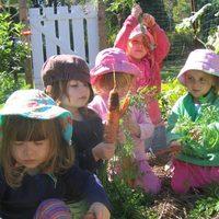 Gasztronómiával kapcsolatos alapítványok 6. - Növénytermesztést tanulnak a gyerekek