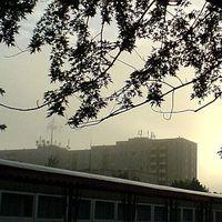 az első ködös reggel