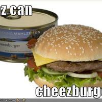 i haz can cheezburger