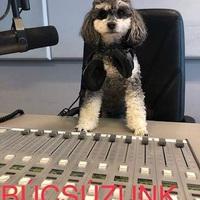 Megszűnik a Music FM...