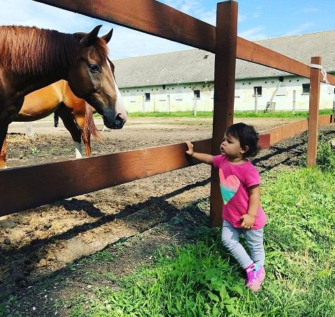 nagy_balazs_kislanya_lazan_nezeget_egy_lovat.jpg