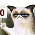 Sminkötlet Halloweenra: Grumpy Cat