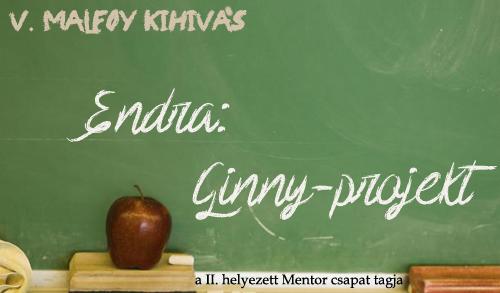 mentor_endra2.jpg