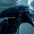 Alien: Covenant - avagy a rajongók sem tudják, mi van...
