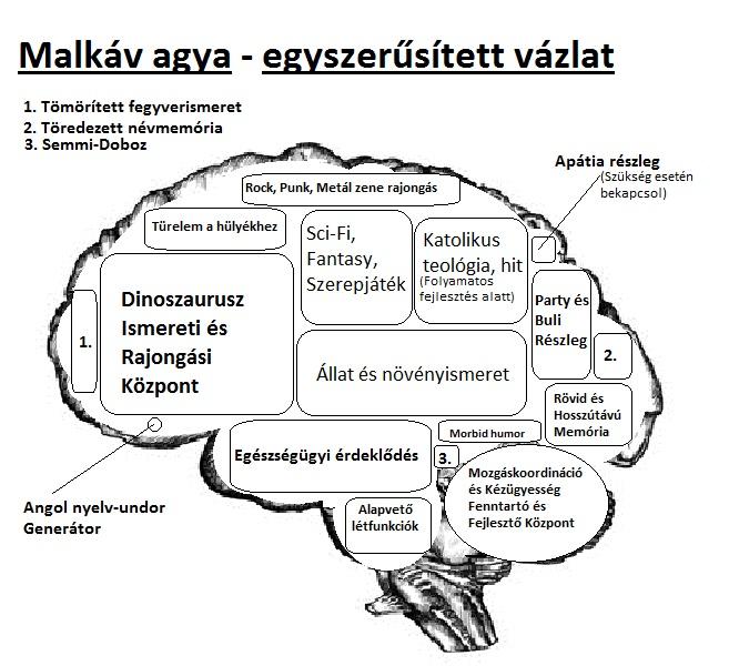 malkav_agya_vazlat.jpg
