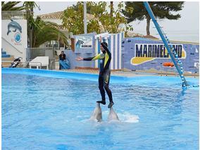 Mallorca Marineland delfinárium