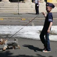 A pályakezdő rendőr