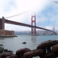 Trolibusz + Obama + Peace = San Francisco