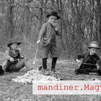 Mandiner.Magyarország: Oktatás