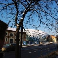 Budapesti CET: óriásbálna belülről
