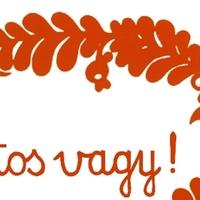 Fontos vagy! – nyelvhasználati kampány a Felvidéken