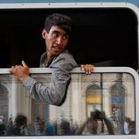 Gyors migránsok, lelassult Európa − Migráció és mi XVII.