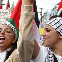 Olvasóink az önálló Palesztina mellett