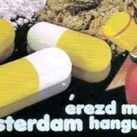 Te is lehetsz drogkereskedő!