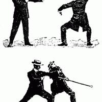 Három nyulak összeültek - Elemér és a társadalmi szerződés